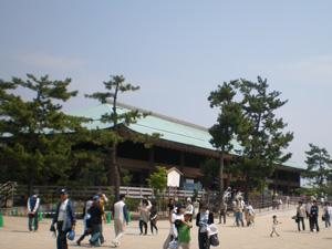 20070503miyajima