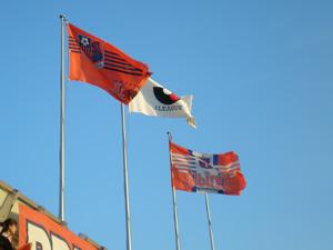 20070616flag